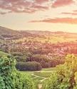 en Bourgogne-Franche-Comté